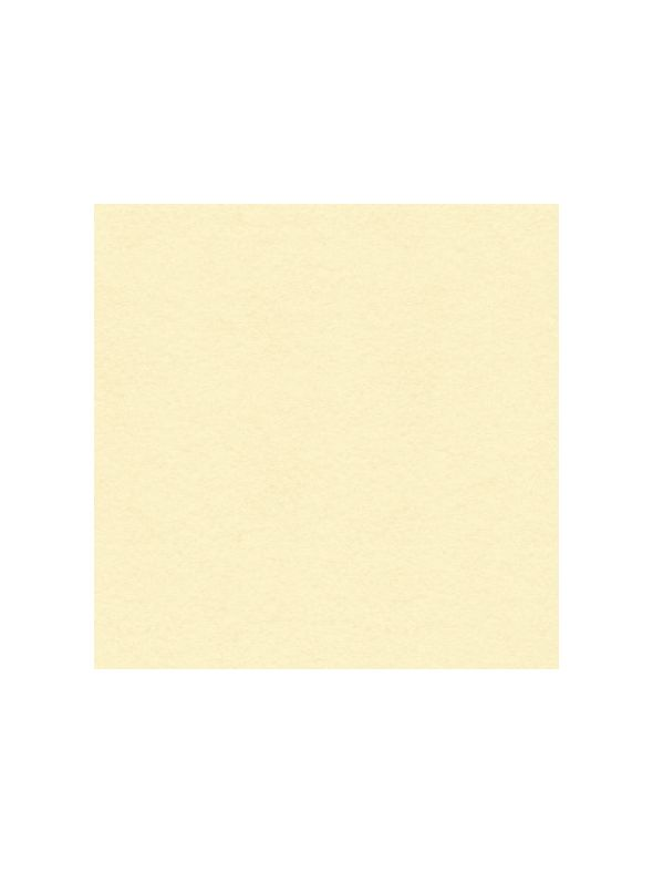 Vanilla Cream Solid Core Cardstock